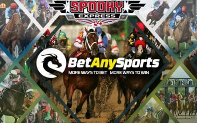 Betting the 2019 Belmont Stakes at BetAnySports